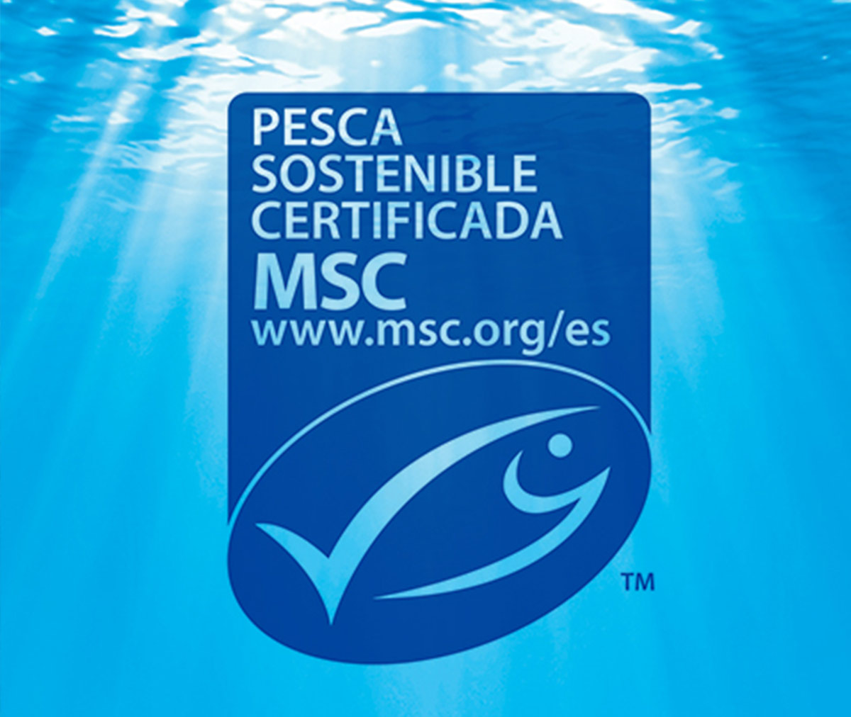 Seafreeze Limited, Grupo Profand's subsidiary, received the MSC certification of sustainable fishing